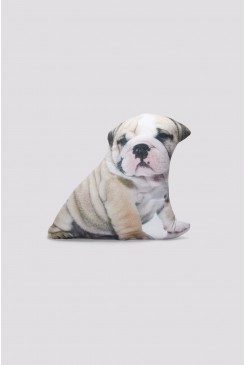 British Bulldog Cushion